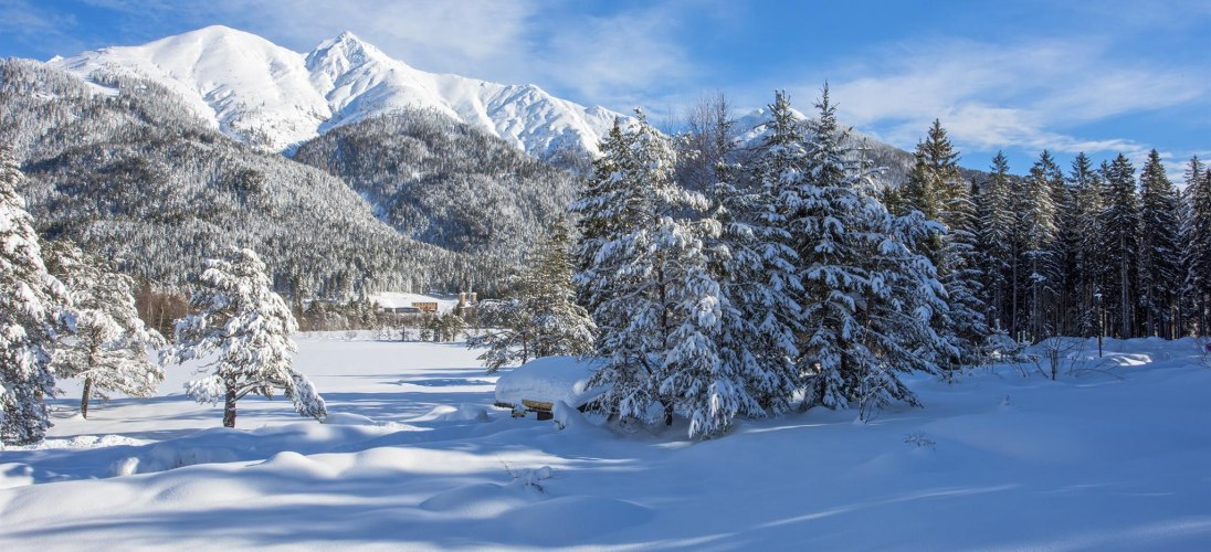 Appartements Haus Wildsee Ausblick im Winter